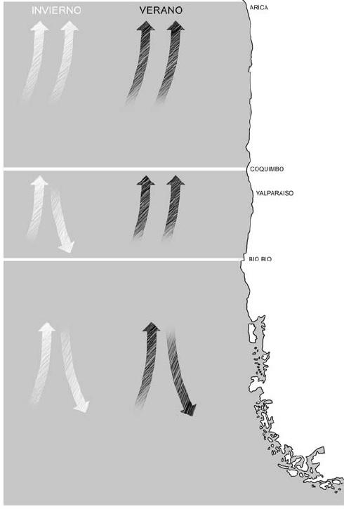 Figura 1 REMA 7
